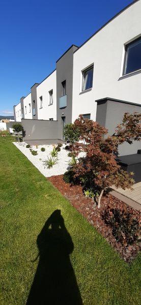 Uprava-zahrady-dvoj-dom-Acer-palmatum